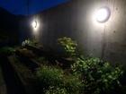 夜庭004.JPG