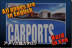 アメリカ版カタログ.png