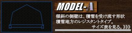 モデルAスケール.png